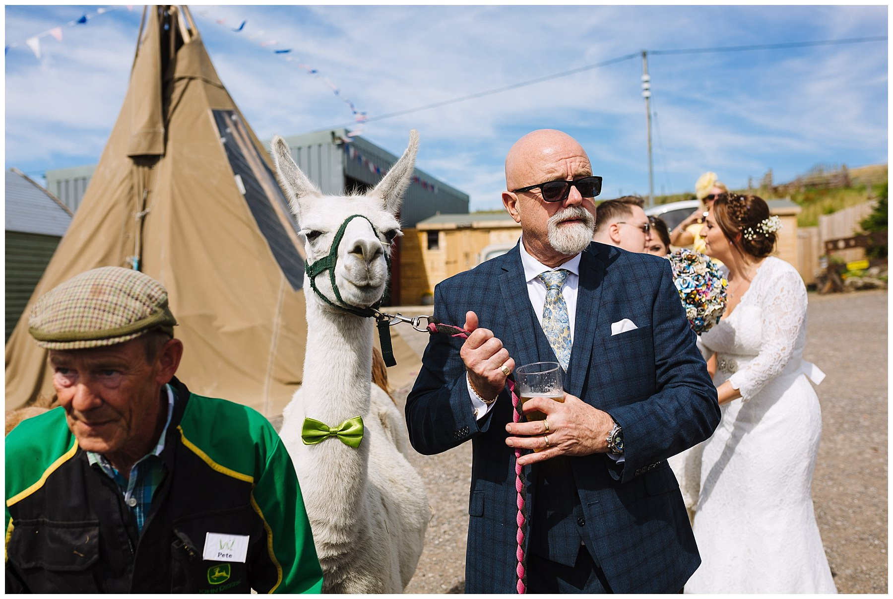 wedding guest and llama at the wellbeing farm