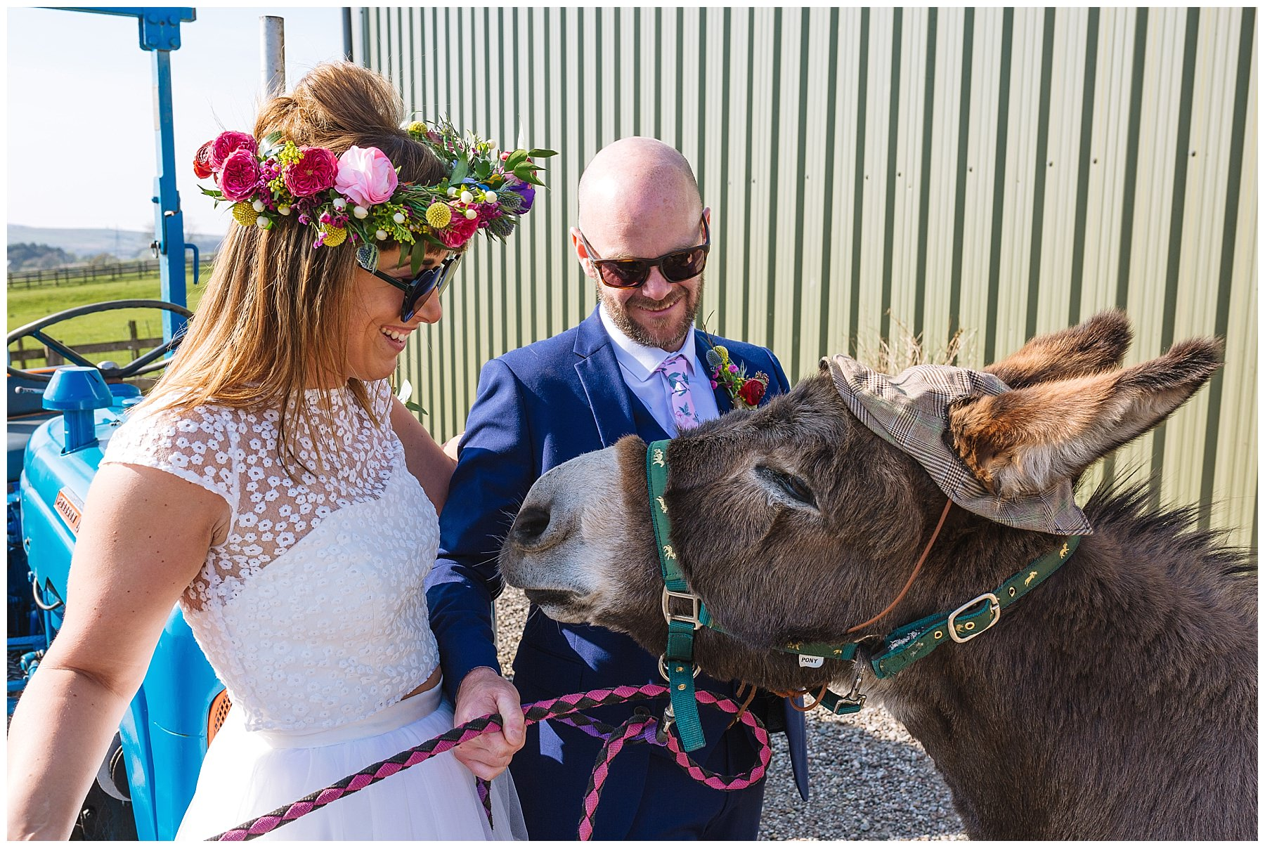 bride and groom and crakerjack the donkey at the wellbeing farm